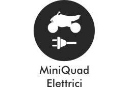 Mini Quad Elettrici